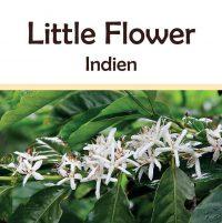 Indien Little Flower